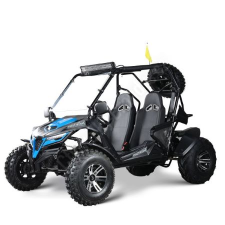 Trailmaster Cheetah 150X
